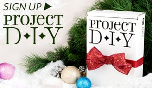 Subscribe to Project DIY