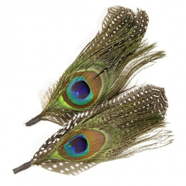 "5.5"" FEATHER PICK PEACOCK - MULTI"