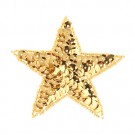 "3"" STAR SEQUIN APPLIQUE"