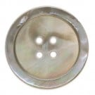 Silvery Shell Button