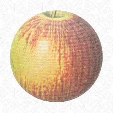 Single Apple Button
