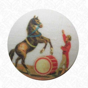 Horse & Trainer Button